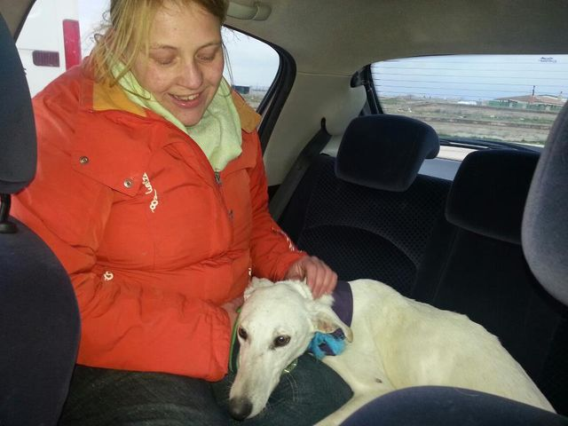 GalgoAid-FEB2013-Gwen-13